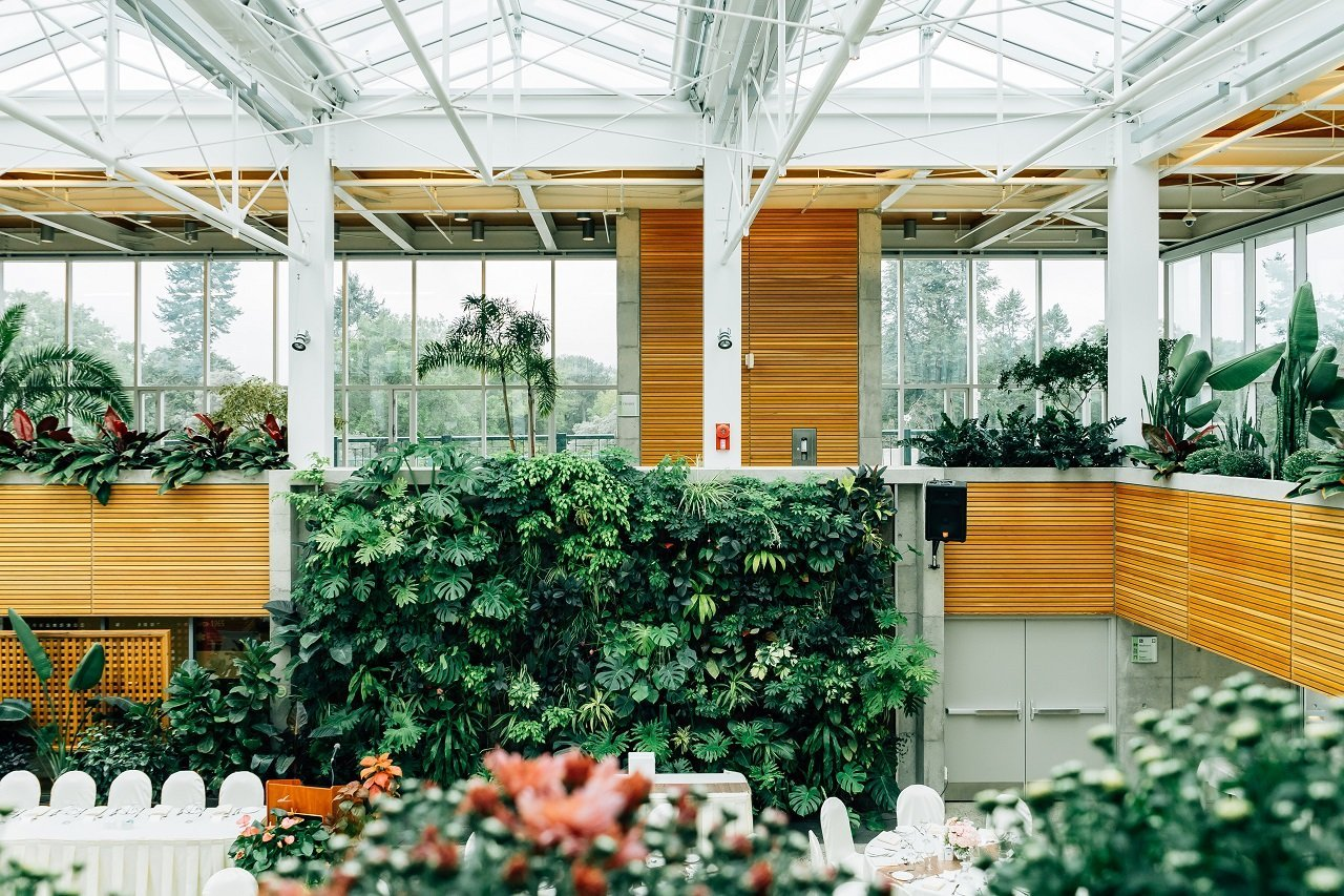Natural Green Walls In Co-working Spaces can inspire you says Derek Lotts at Idea Girl Media