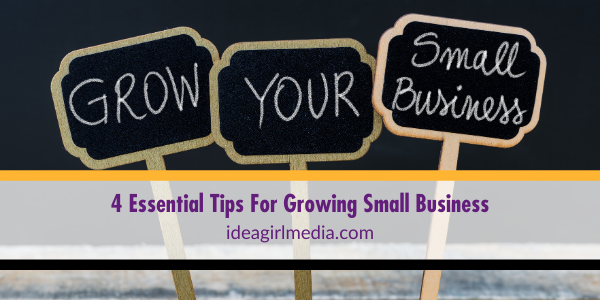 Four Essential Tips For Growing Small Business outlined at Idea Girl Media