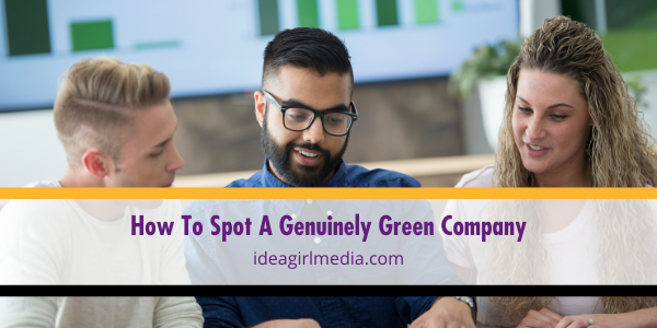 How To Spot A Genuinely Green Company mapped out at Idea Girl Media