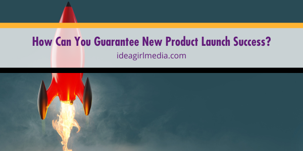 How Can You Guarantee New Product Launch Success? Question answered at Idea Girl Media