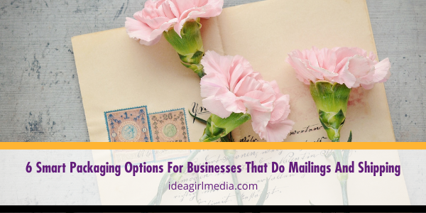 Six Smart Packaging Options For Businesses That Do Mailings And Shipping listed and detailed at Idea Girl Media
