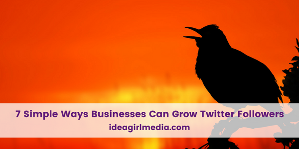 Seven Simple Ways Businesses Can Grow Twitter Followers outlined at Idea Girl Media
